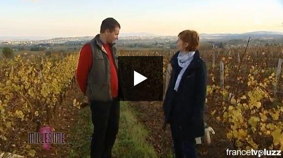 France 3 Bourgogne : Emission Millésime sur nos Beaujolais Blanc