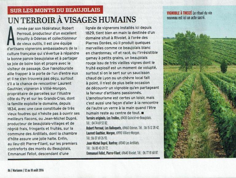 Citation du Beaujolais Blanc et du gamay à petit grain dans le magasine Marianne