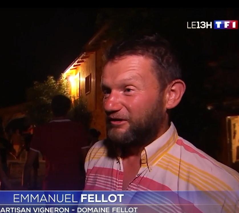 Reportage sur les vendanges (JT 13h TF1 13/09/18)